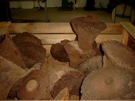 grasbaum 1 5 kg preis pro kg hobbyholz mark terh rst. Black Bedroom Furniture Sets. Home Design Ideas
